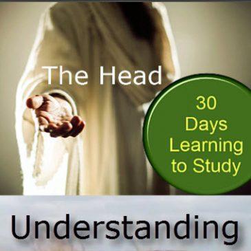 El Jefe – Entendiendo la Escritura